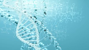 Genomilain valmistelua tulisi jatkaa laajalla sidosryhmäyhteistyöllä